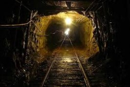 دستورالعمل اطلاعات معادن زغالسنگ (جهت تهیه بانک اطلاعات )